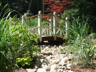 dry stream